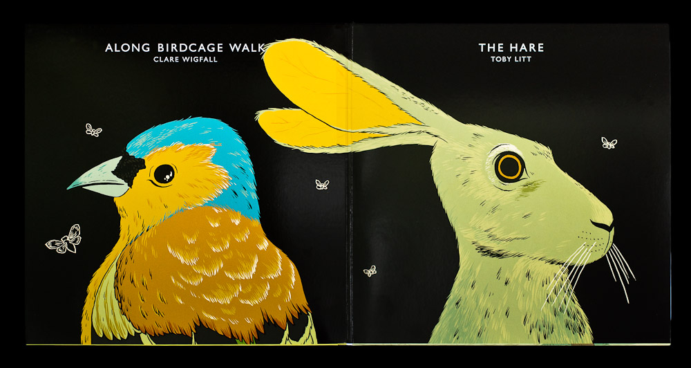Toby Litt and Clare Wigfall - The Hare and Along Birdcage Walk