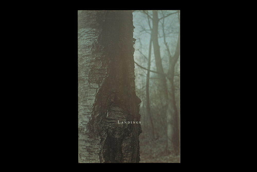 Richard Skelton - Landings