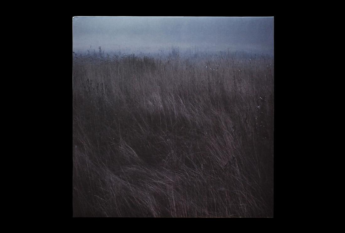 Plant43 - Burning Decay