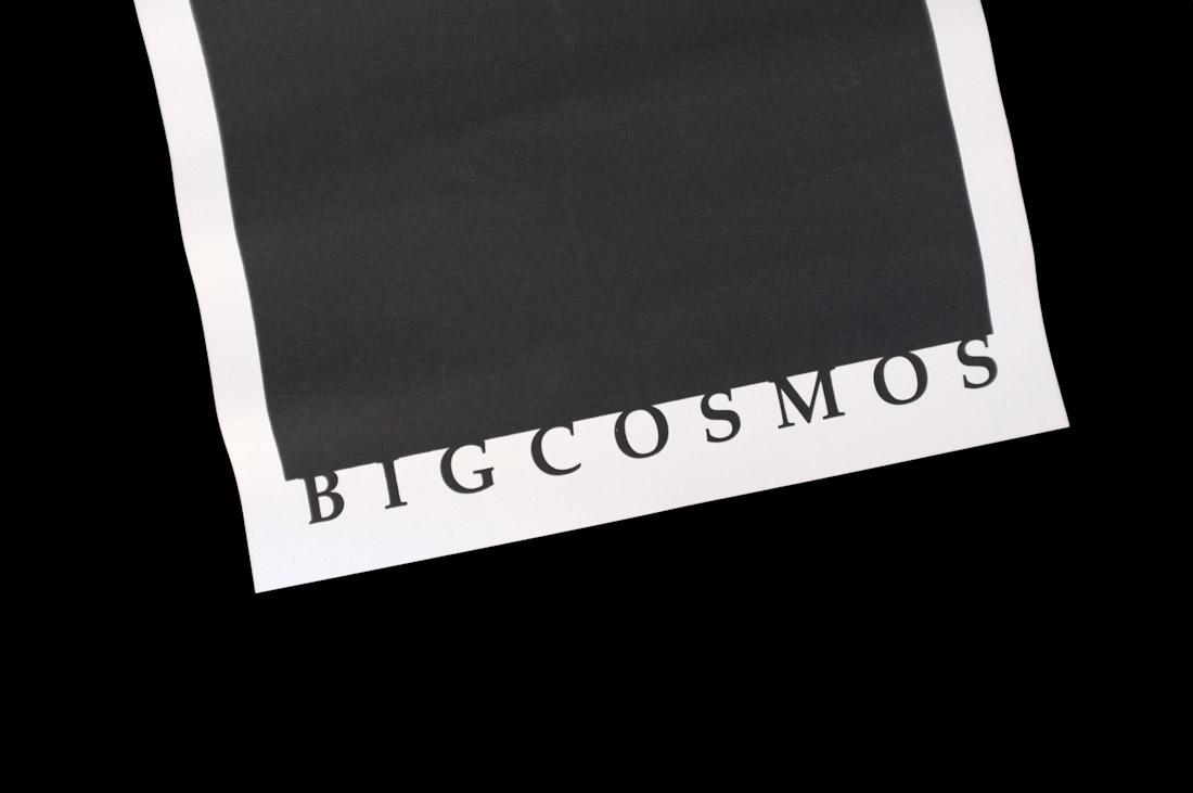 Big Cosmos